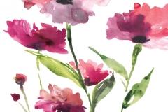 RazzleberryBlossoms