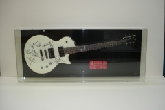 Guitar in Plexi glass box