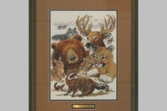 North-American-Wildlife